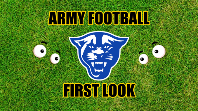 Eyes on Georgia State logo